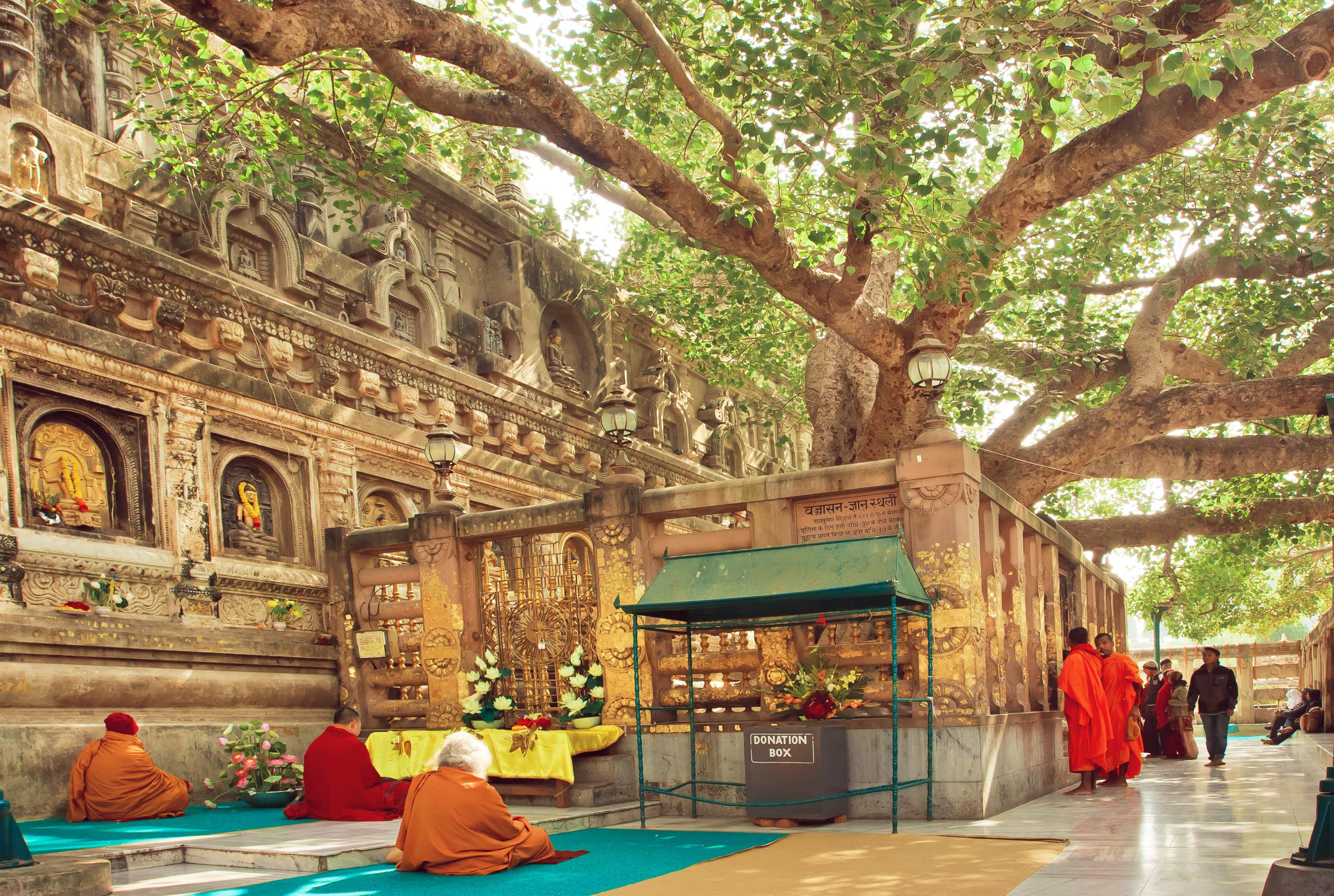 Buddha Full Moon - Conscious Calendars