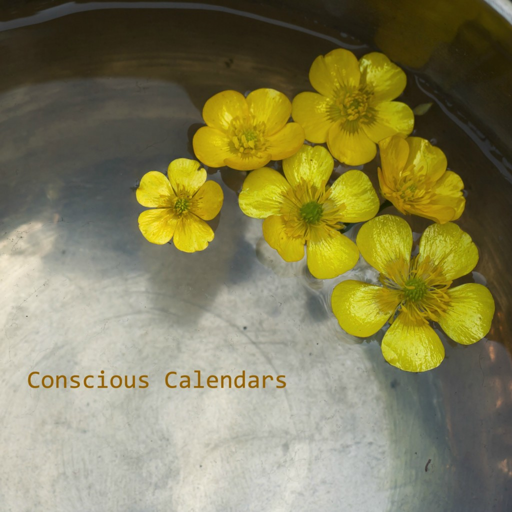 yellow flowers copper bowl