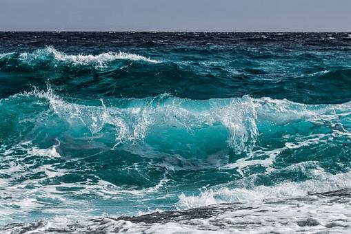 ocean conscious calendars