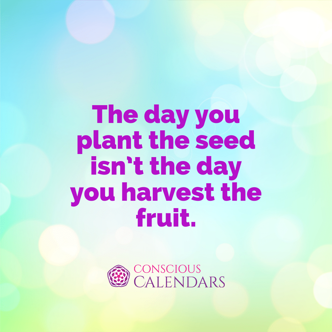 The day you plant the seed isn't the day you harvest the fruit.